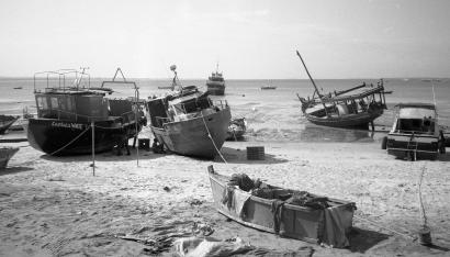 Local Fisherman Harbor, Tanzania 2017